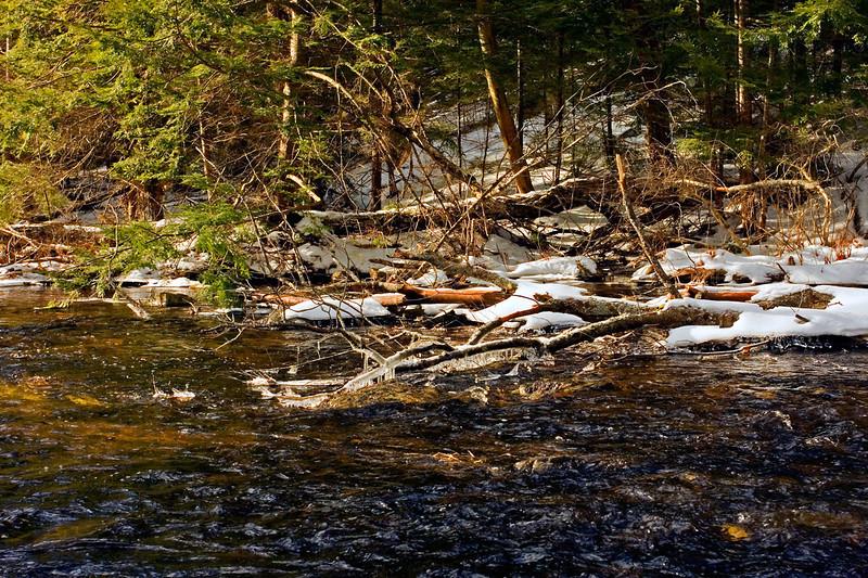 Big River-01-30-09