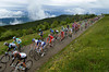 A main group of about 60 riders crosses the pretty summit of the Grand Colombier...