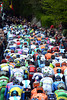The peloton settles down to 'enjoy' its first ascent of the Mur de Huy - the gap to the escape is only four minutes...