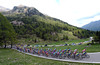 The peloton is almost together halfway up the next ascent, the Passo Manghen...