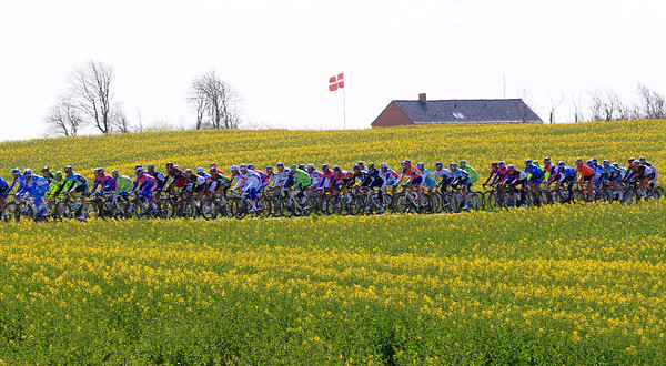 The peloton passes a Danish flag in some typical Danish countryside...