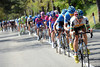 Robert Hunter chases for Garmin - the plan is to get Ryder Hesjedal into Pink..!
