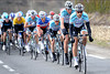 Omega-Pharma has taken over the pace-setting - and that's Tom Boonen working away at the front..!