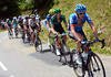 Dan Martin and others have joined the escape - there are 31 riders in it..!