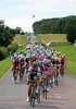 Green Edge lead the peloton towards the flying sprint - taken by Mark Cavendish from Matthew Goss...