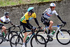 Sky's three musketeers - Wiggins, Thiomas and Cavendish - call a halt to the chasing while their teamates stop for a call of nature...