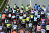 This is surely a most multi-coloured peloton in the Tour de Suisse...