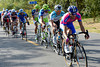 Lampre are chasing today, led by Morris Possoni...