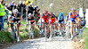 Gregory Rast and Cancellara compete for position with Rabobank on the Koppenberg...