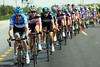 Millar is leading the peloton at a high rate of knots, and he'll be there for quite a while yet..!