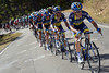 Saxo Bank is in full flight, pursuing the escape but also hurting their rivals behind...