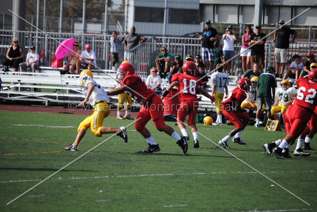 Frosh White Edison 2012-09-2145083