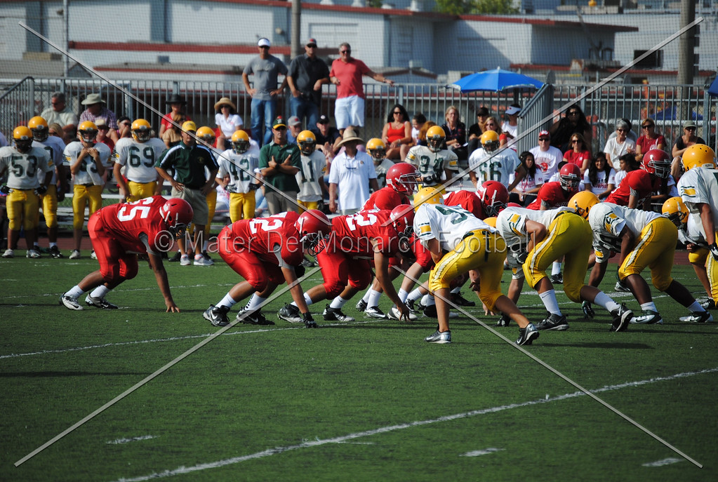 Frosh White Edison 2012-09-2145094