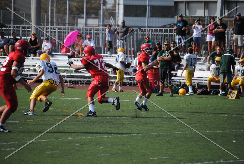Frosh White Edison 2012-09-2145084