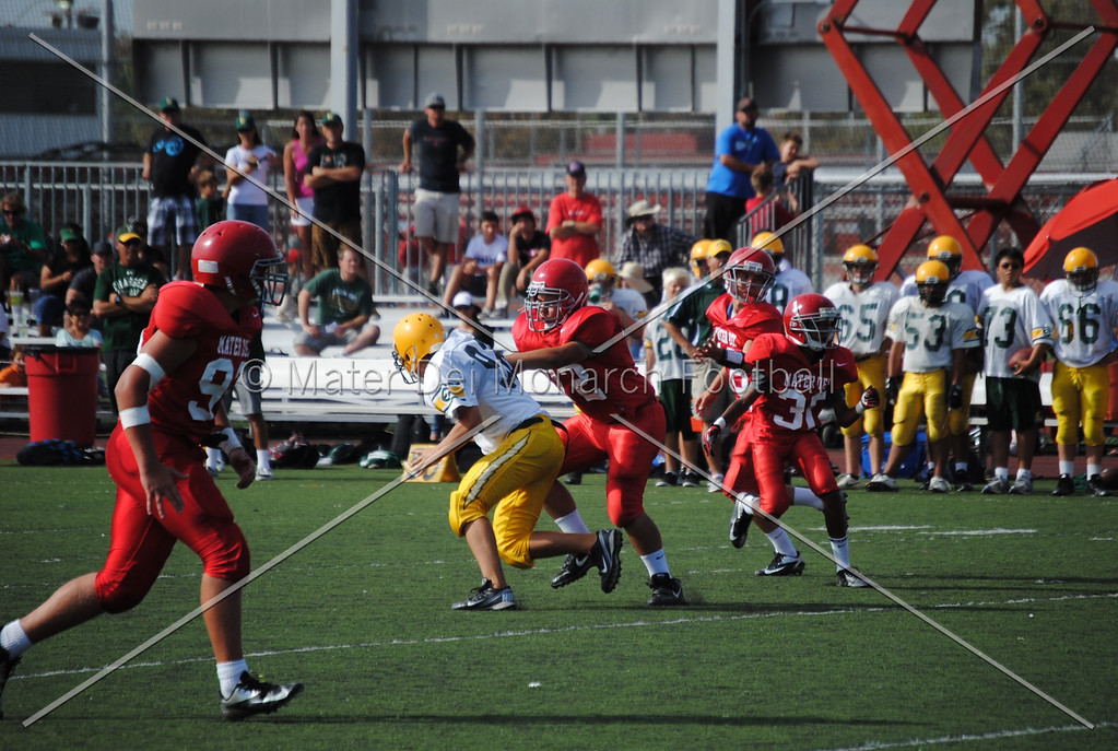 Frosh White Edison 2012-09-2145087