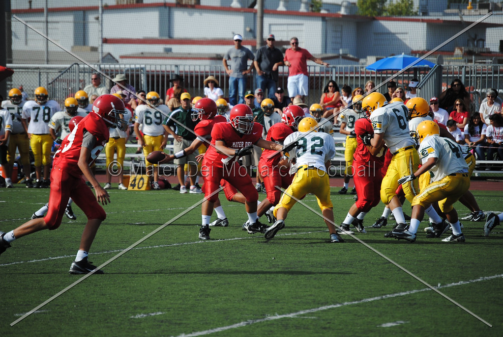 Frosh White Edison 2012-09-2145097