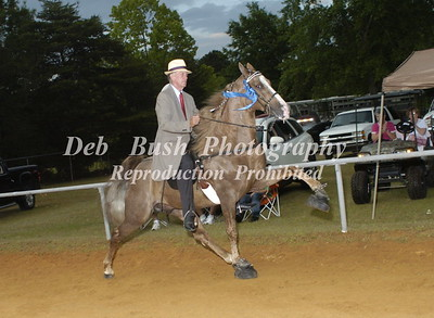 CLASS 22 AMATEUR 50 YRS & OLDER SPECIALTY