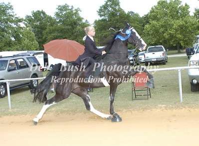 CLASS 3  WALKING YOUTH RIDERS 11 AND UNDER