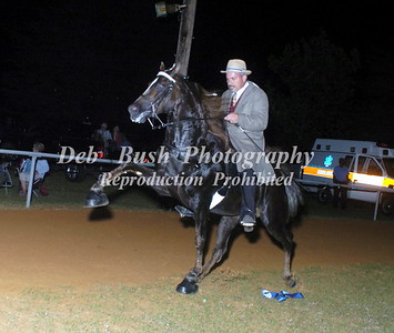 CLASS 30 PONY AMATEUR 18 &  OVER  SPECIALTY