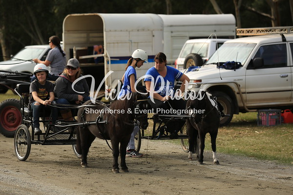 Harness Fun Day at Byford - 17.6.2012
