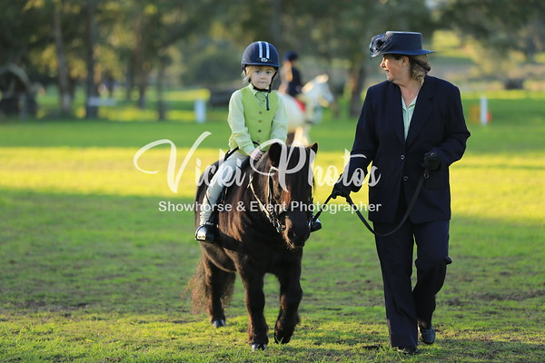 Little Britches Show and Focus on Youth - 20.5.2012