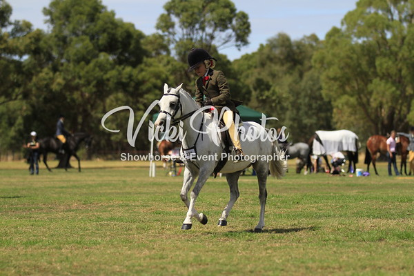 Serpentine Gala Hack and Hunter Spectacular 25-03-2012