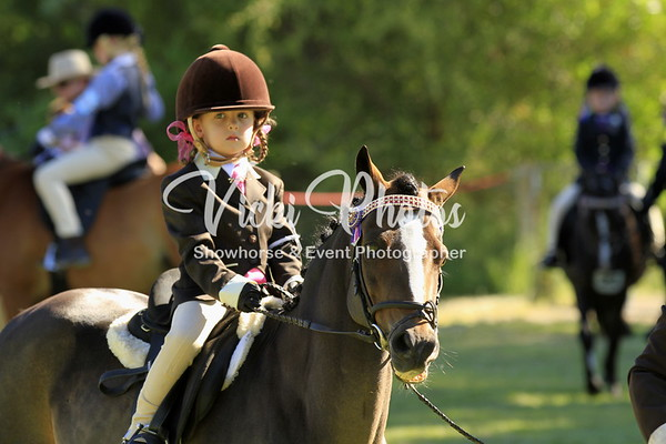 Wanneroo Showhorse (Unofficial) - 3.4.2012