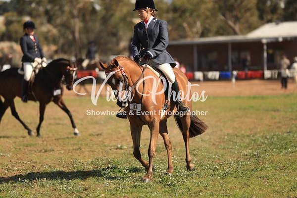 York Horseman's Assoc. 60th Anniversary 2012
