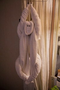 We were greeted each evening with a different towel creation!