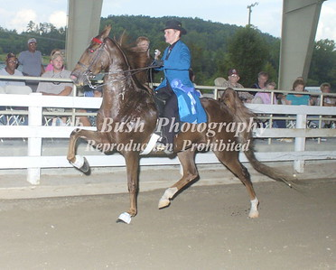 CLASS 12  AMATEUR OWNED & TRAINED OPEN