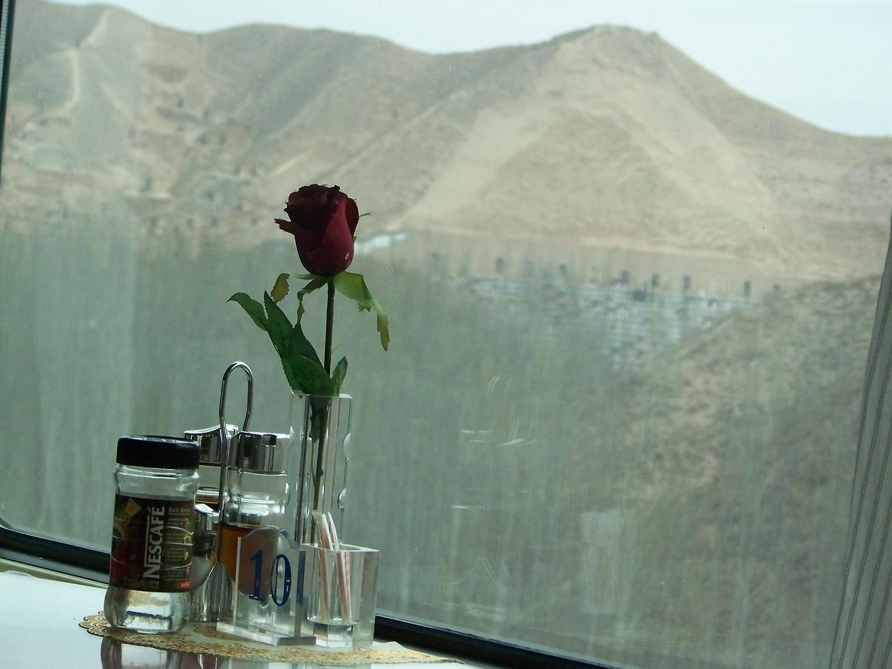 0087 - Hillside on Train Trip Between Beijing and Lhasa.JPG