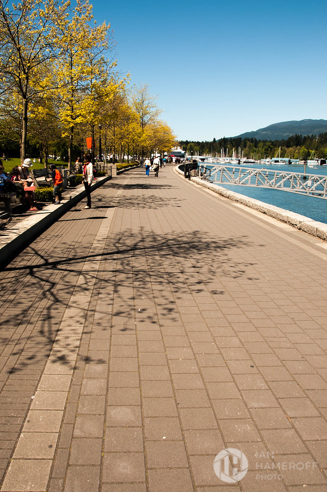 A Walk Along the Waterfront