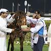 Meydan DWC Super Saturday Carnival Horse Race Meeting, Dubai, 8 Mar 2014