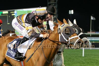 2013 - 2014 Horse Racing Season