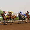Jebel Ali Horse Race Meeting, Dubai 21 March 2014