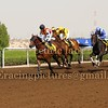 Jebel Ali Horse Race Meeting, Dubai 21 March 2014