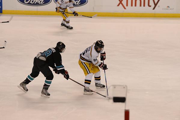 2013-2014 Hockey