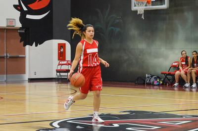 2013 Senior Girls Basketball