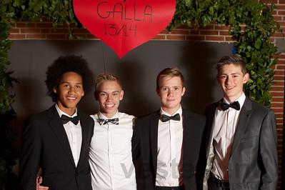 Galla 2013