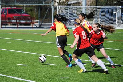 Senior Girls Soccer 2014