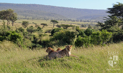 WISER - Global Service Program trip to Kenya - Photograph by  Maria Guilhermina Pessoa de Queeiroz '15.