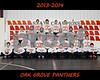 IMG_3157 OGHS Wrestling Team 8X10