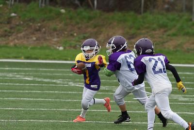 2013; AFBÖ; American Football; Vienna Vikings; U11; Youth