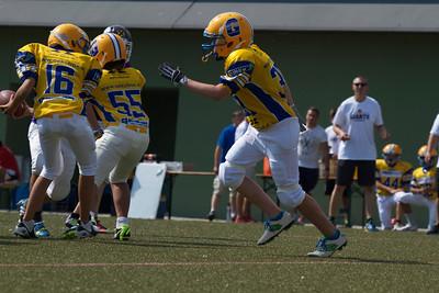 2013; AFBÖ; American Football; Graz Giants; Vienna Vikings; U13; Youth