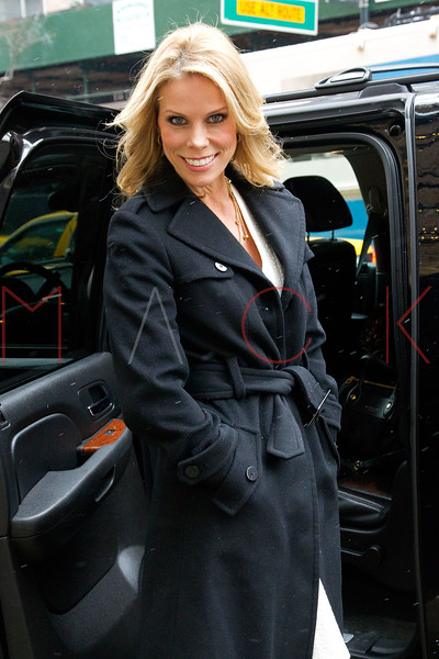 New York, NY - February 05: Cheryl Hines at Live with Kelly and Michael at Live with Kelly and Michael on Tuesday, February 5, 2013 in New York, NY.  (Photo by Steve Mack/S.D. Mack Pictures)