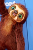 163251822SM006_The_Croods_N