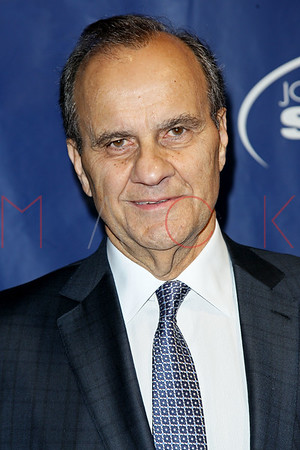 NEW YORK, NY - NOVEMBER 14:  The Joe Torre Safe At Home Foundation's 11th Anniversary gala at Pier Sixty at Chelsea Piers on November 14, 2013 in New York City.