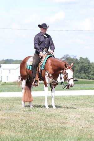 Mayabb Quarter Horses