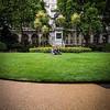 Garden at the Royal Horseguards