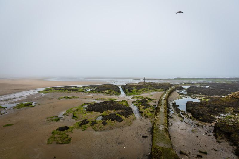 St Andrews Coast